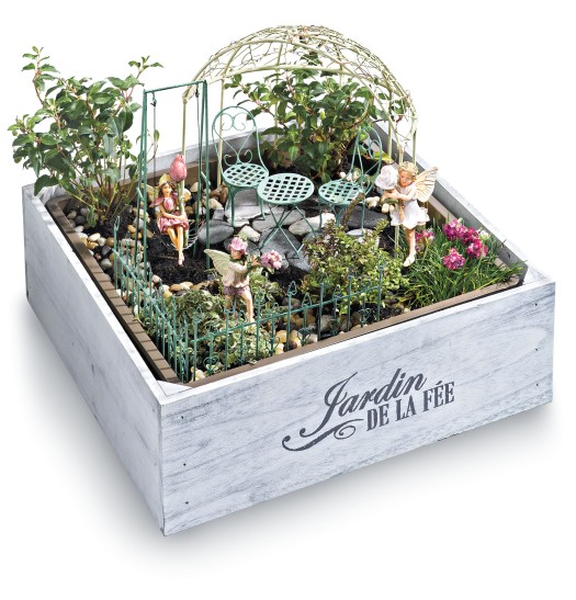 Chasing Fireflies Fairy Garden Box.  Image provided by David Niggli / Anna Shryver, MaxComPR